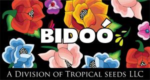 Logo-BIDOO-web