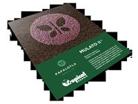 Mulato II. Technical Sheet. Tropical Seeds.